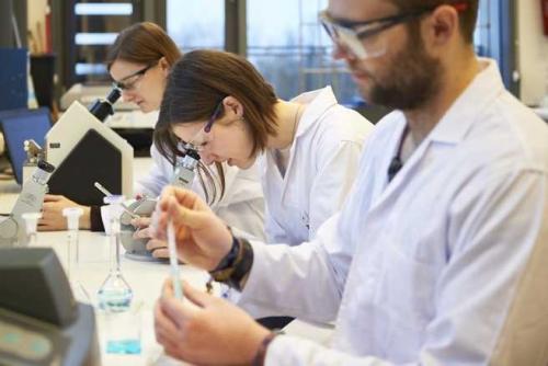 Chemiepraktikum 2016